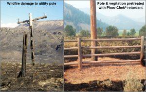 RFW-poles